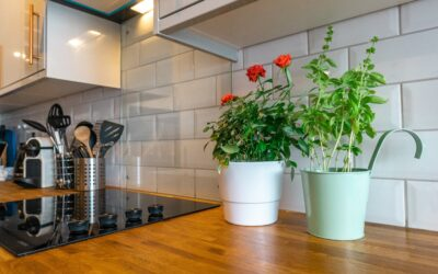 How to Decorate Your Current or Build Your New Kitchen